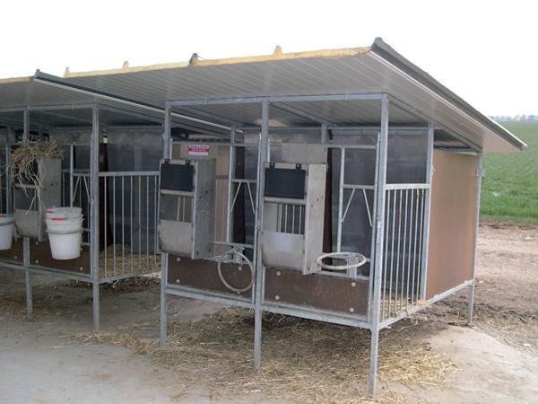 box per vitelli salvetti e gervasi