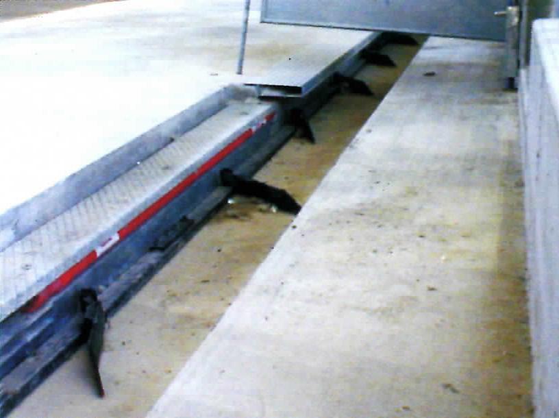 elevatori per letame con propulsione idraulica